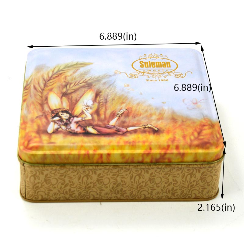 Customized oatmeal biscuit tin box size